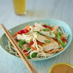 United Airlines Asian Style Noodle Salad